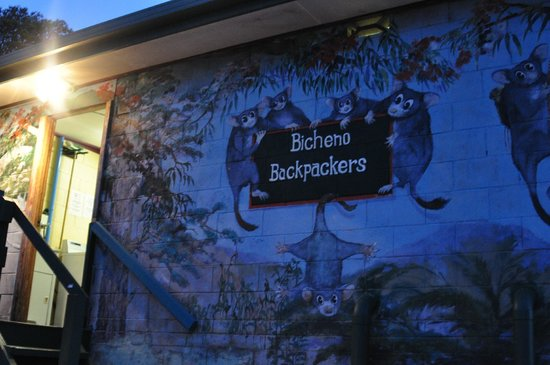 Bicheno Backpackers: painting on walls