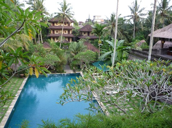 Pertiwi Resort & Spa: view of back pool