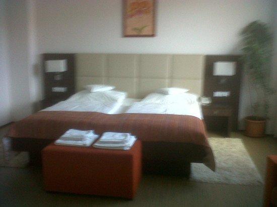 안코라 호텔 프라하 사진
