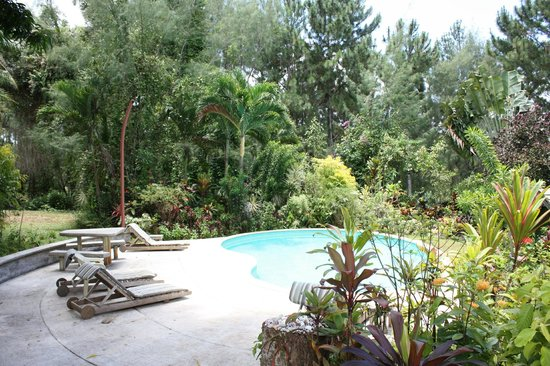 Atiu Villas : The pool