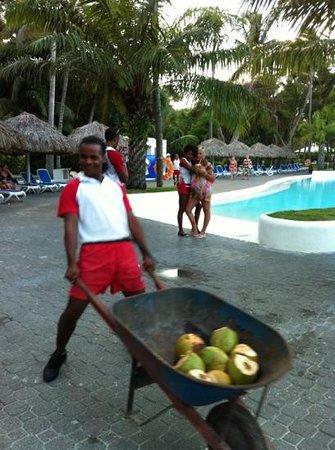 Hotel Riu Naiboa: коко пати у бассейна