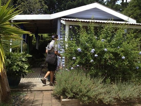 Fossil Bay Lodge: Blue Cabin