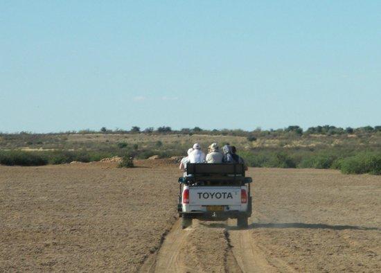 Kalahari Anib Lodge: Safari vehicle (note no protection from sun !)