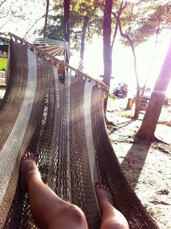 Camping Madera: Hammock time