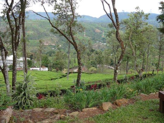 Ceylon Tea Trails: vista desde exterior del hotel