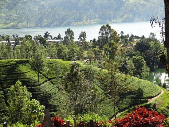 Ceylon Tea Trails: lago a diez minutos del hotel