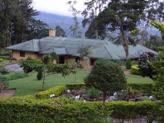 Ceylon Tea Trails: vista del hotel desde la plantación de te