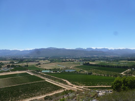 View from the Babylonstoren hill - a nice little hike through the vineyard