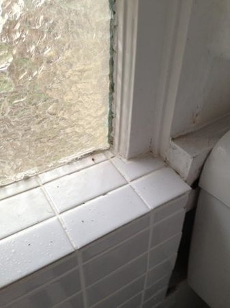 The Last Villa: more dead flies on bathroom window which is in the bath so you're expected to clean yourself in