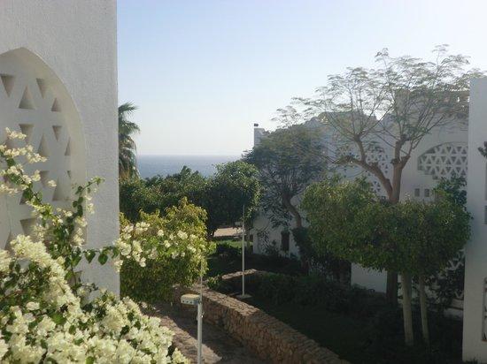 Domina Coral Bay Oasis:                   Вид из нашего номера на втором этаже отеля