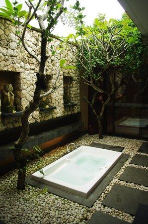 烏布綠色飯店照片