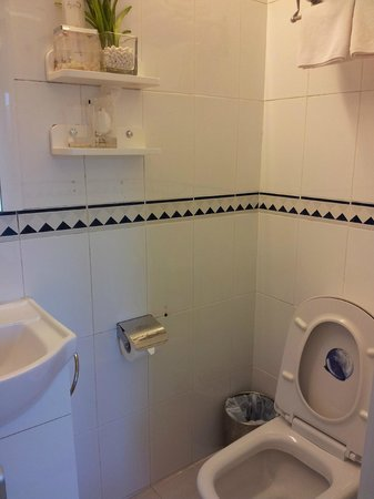 Concerto Inn: Washroom