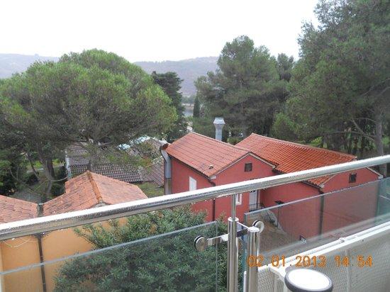 Svoboda Hotel: vista camera 1