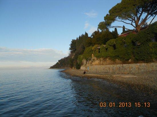 Svoboda Hotel: spiaggia 1