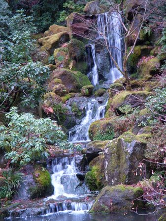 Pearl District: Waterfall in the Japanese Garden
