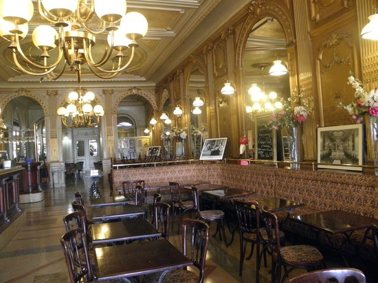 Cafe de la paix, La Rochelle - Restaurant Reviews, Phone