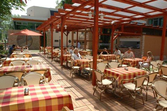 Holiday Beach Budapest Wellness & Conference Hotel: Terrece