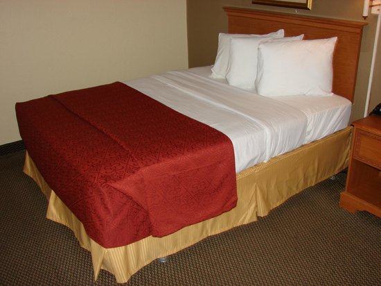 Quality Inn Newport News: 1 Double Bed