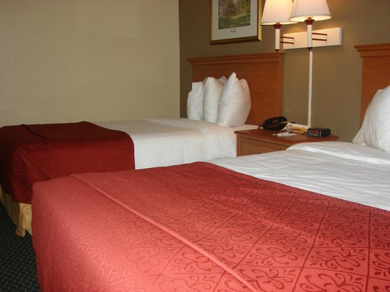 Quality Inn Newport News: Another view of a 2 Double Bed Room