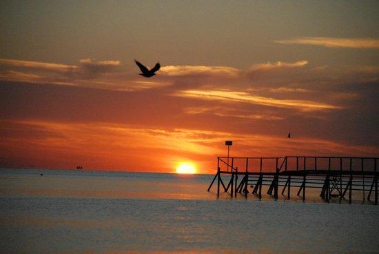 The Sombrero Hotel: il mare di rivazzurra all'alba