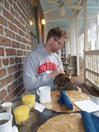 Savannah Bed & Breakfast Inn: The cats are friendly but not annoying