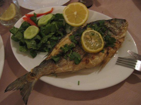 Kalavasos, Cyprus: Grilled Seafish