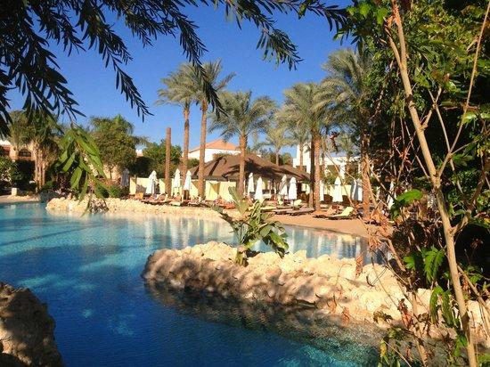 Eine der Poollandschaften - Picture of Ghazala Gardens ...