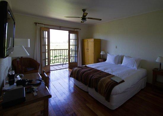 تيرا فينا: Room 15 