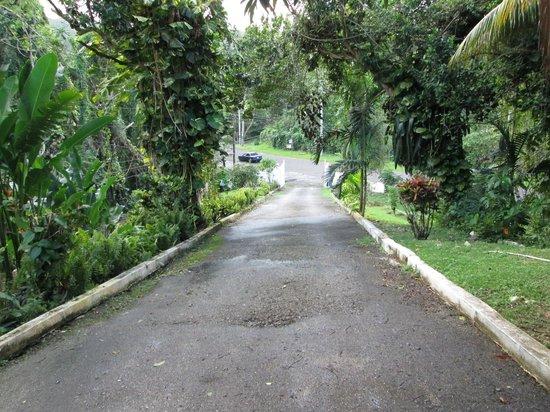 San San Tropez Villa-Hotel: Entrance hill
