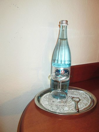 Bavaria Hotel Münchner Hof: acqua