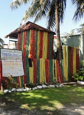 Survival Beach Restaurant