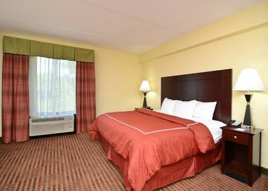 Comfort Suites Mount Juliet: King Suite