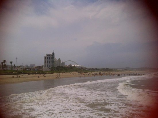 Suncoast Towers: View from the Beach looking at Suncoast
