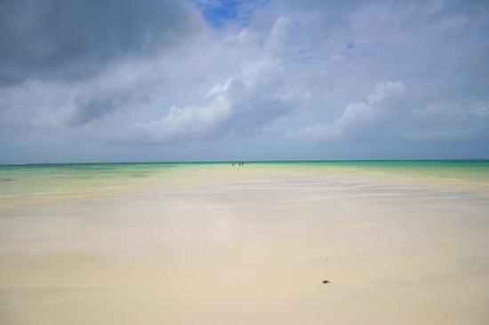 Neptune Palm Beach Boutique Resort & Spa: plage marée basse