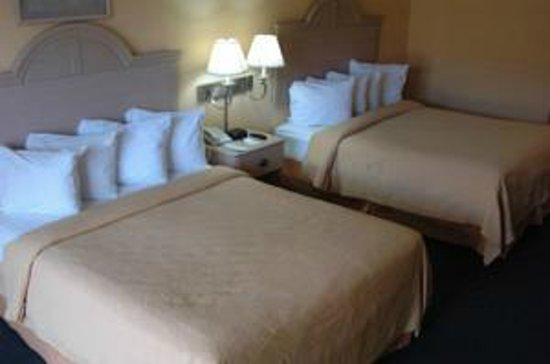 Ambassadors Inn & Suites - Virginia Beach: QUUENS
