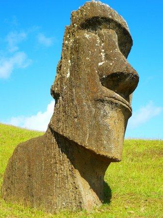 Chez Steve Residencia Kyle Mio: Moai