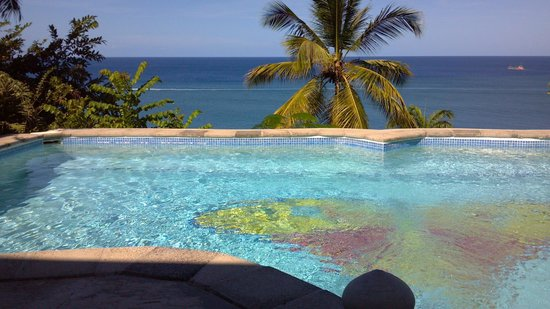 Oasis Marigot: butterfly beach house pool