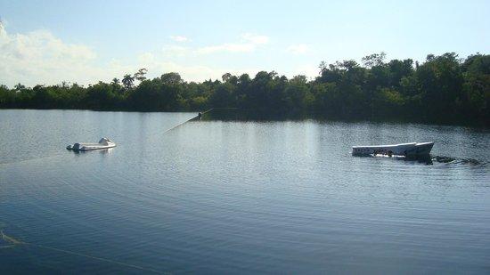Restaurante Cenote Azul: Otra de las vistas hacia el Cenote