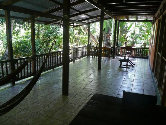 Selvin's Cabinas: Patio for some of the rooms surrounded with lush tropical vegetation