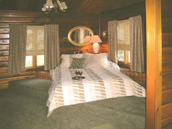 The Peaceable Kingdom B & B: Our Cozy Cabin Master Bedroom