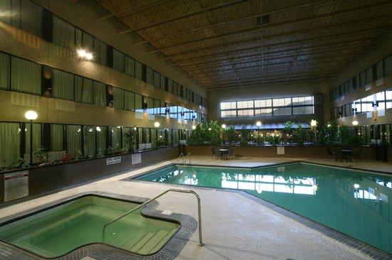 Sandman Hotel Castlegar: Pool Atrium