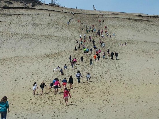 Pelican Pub & Brewery: Climbing the Dune
