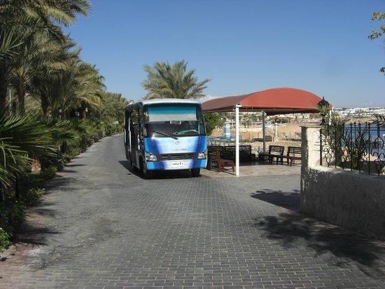 Sultan Gardens Resort: TaffTaff at beach stop