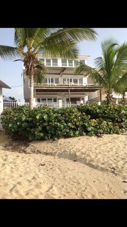 Villa Tropical Oceanfront Apartments on Shacks Beach: Villa Quinones from beach M1 M2 M3 M4