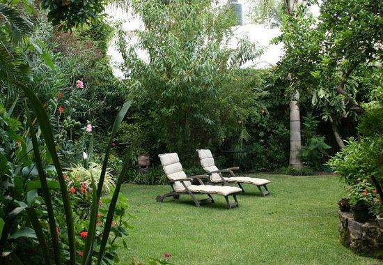 Villa Ganz: Jardín