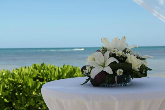 BlueBay Grand Esmeralda:                   Our beautiful wedding location