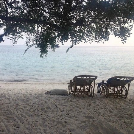 Haadtien Beach Resort: Private beach
