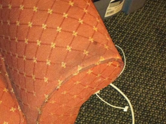 Homewood Suites by Hilton Erie: Living room area couch worn and dirty and really uncomfortable