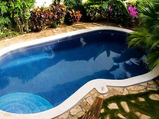 Hotel Patio del Malinche: Piscina del hotel.