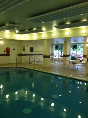 Homewood Suites by Hilton Erie: Nice clean indoor pool area